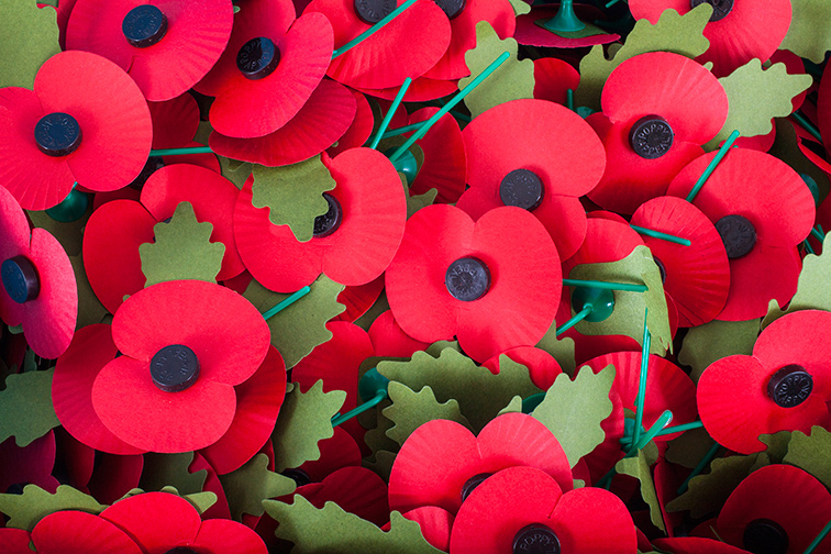 Remembrance Sunday with Rev Paul Needle